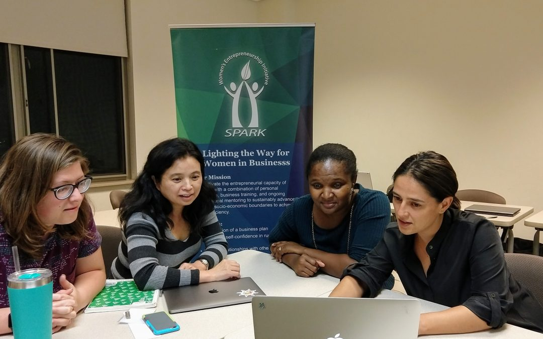 St. Mary's College: Women's Entrepreneurship Initiative